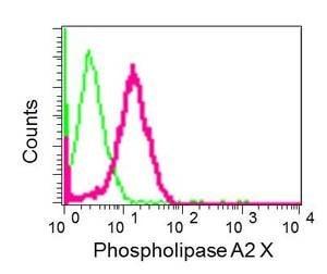 Flow Cytometry - Anti-sPLA2-X antibody [EPR11202] (ab166634)