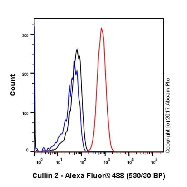 Flow Cytometry - Anti-Cullin 2/CUL-2 antibody [EPR3104(2)] (ab166917)