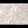 Immunohistochemistry (Formalin/PFA-fixed paraffin-embedded sections) - Anti-SP100 antibody (ab167605)
