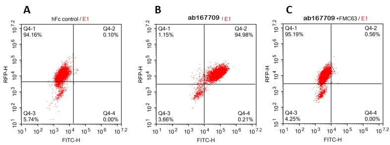 Flow Cytometry - Recombinant human CD19 protein (Fc Chimera Active) (ab167709)