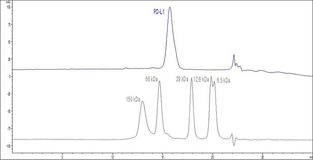 Functional Studies - Recombinant human PD-L1 protein (Active) (ab167713)