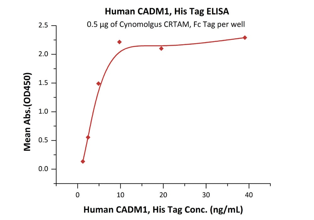 Functional Studies - Recombinant human SynCAM/CADM1 protein (ab167740)