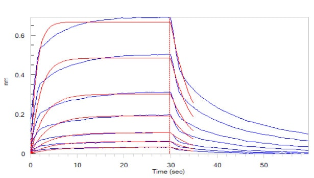 Functional Studies - Recombinant human CD16 protein (ab167758)