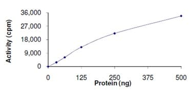 Functional Studies - Recombinant human Activin Receptor Type IA (mutated R206 H) protein (ab167922)