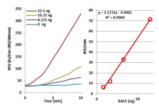 Functional Studies - Recombinant human BACE1 protein (Active) (ab168075)