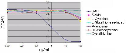 Competitive ELISA - Anti-Adenosyl Homocysteine antibody [EPR4499] - BSA and Azide free (ab168537)
