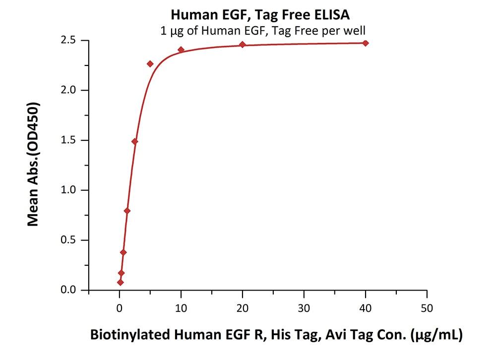 Functional Studies - Recombinant human EGF protein (ab168895)