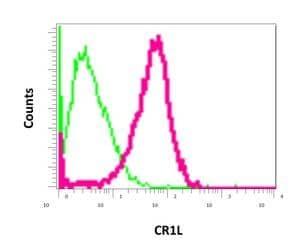Flow Cytometry - Anti-CR1L antibody [EPR9604(B)] (ab169543)