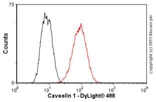 Flow Cytometry - Anti-Caveolin-1 antibody [7C8] (ab17052)
