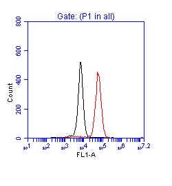 Flow Cytometry - Anti-p53 antibody (ab17990)