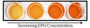 Functional Studies - Recombinant mouse EPO protein (Fc Chimera) (ab170076)