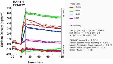 Other - Anti-MelanA antibody [EP1422Y] - Low endotoxin, Azide free (ab170090)