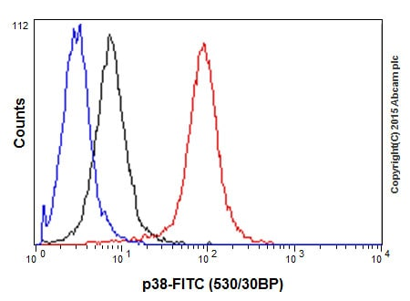 Flow Cytometry - Anti-p38 antibody [E229] (ab170099)
