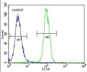Flow Cytometry - Anti-ZNF619 antibody - N-terminal (ab170180)