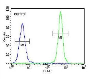 Flow Cytometry - Anti-ALKBH6 antibody (ab170186)