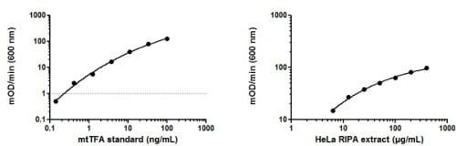 mtTFA (TFAM) Human ELISA Kit (ab123455) using HeLa Whole Cell RIPA Extract