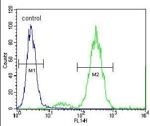 Flow Cytometry - Anti-Endothelin 1 antibody (ab170215)