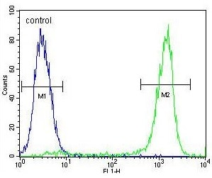 Flow Cytometry - Anti-ZNF829 antibody (ab170227)