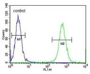 Flow Cytometry - Anti-CCDC148 antibody (ab170229)