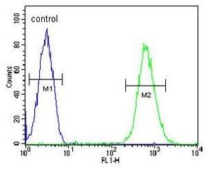 Flow Cytometry - Anti-CD37 antibody (ab170238)