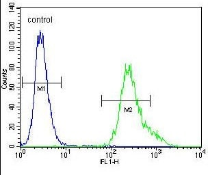Flow Cytometry - Anti-UBXN2A antibody - C-terminal (ab170264)