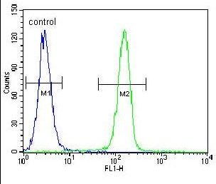 Flow Cytometry - Anti-SELV antibody - C-terminal (ab170270)