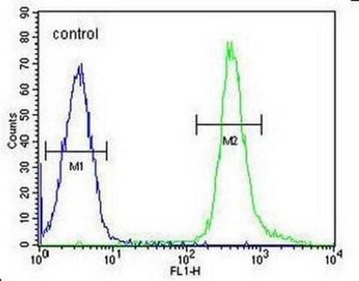 Flow Cytometry - Anti-PNLDC1 antibody - Carboxyterminal end (ab170282)