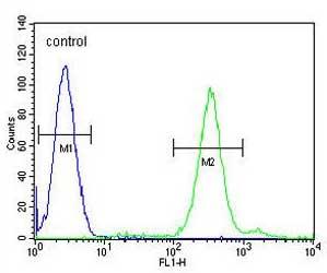 Flow Cytometry - Anti-Protein cornichon homolog 2 antibody - N-terminal (ab170290)