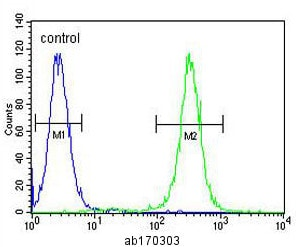 Flow Cytometry - Anti-MNDA antibody - N-terminal (ab170302)