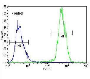 Flow Cytometry - Anti-WDR93 antibody - C-terminal (ab170311)