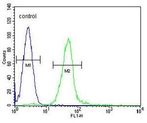 Flow Cytometry - Anti-Glutamyl hydrolase gamma antibody - N-terminal (ab170315)
