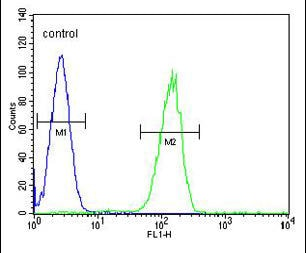 Flow Cytometry - Anti-GPR142 antibody - N-terminal (ab170329)