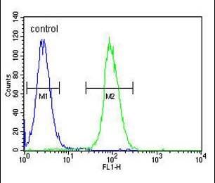 Flow Cytometry - Anti-LIPC antibody - N-terminal (ab170338)