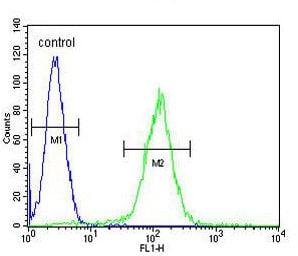 Flow Cytometry - Anti-OR10J5 antibody - C-terminal (ab170346)