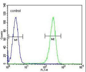 Flow Cytometry - Anti-OR2W3 antibody - C-terminal (ab170353)