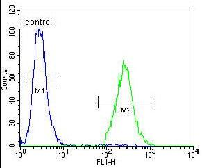 Flow Cytometry - Anti-CCDC54 antibody (ab170357)
