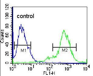Flow Cytometry - Anti-KLF10 antibody (ab170364)
