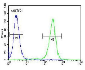 Flow Cytometry - Anti-Musashi 1 / Msi1 antibody - N-terminal (ab170378)