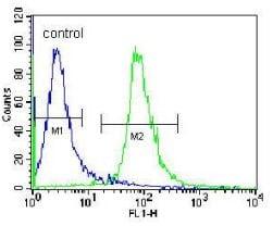 Flow Cytometry - Anti-RSBN1 antibody - N-terminal (ab170387)