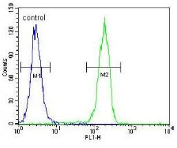 Flow Cytometry - Anti-Cyclin G antibody - C-terminal (ab170389)