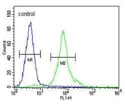 Flow Cytometry - Anti-CCDC81 antibody (ab170391)
