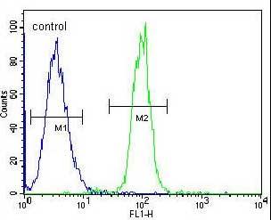 Flow Cytometry - Anti-TCF21 antibody - C-terminal (ab170395)