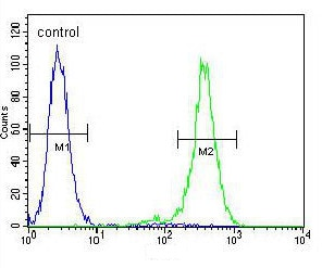 Flow Cytometry - Anti-OR2B11 antibody - C-terminal (ab170435)