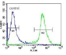Flow Cytometry - Anti-CD45 antibody - N-terminal (ab170444)