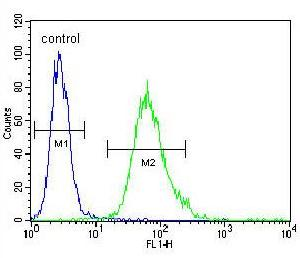 Flow Cytometry - Anti-SCEL antibody (ab170476)
