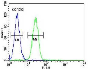 Flow Cytometry - Anti-Tbx6 antibody - C-terminal (ab170482)