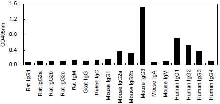 ELISA - HRP Anti-IgG3 antibody [KT94] (ab170490)