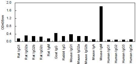 ELISA - HRP Anti-IgM antibody [KT95] (ab170492)
