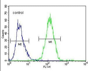 Flow Cytometry - Anti-ALR antibody - C-terminal (ab170507)