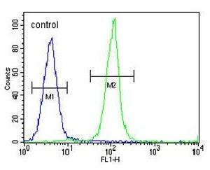 Flow Cytometry - Anti-IGKV A18 antibody - C-terminal (ab170508)